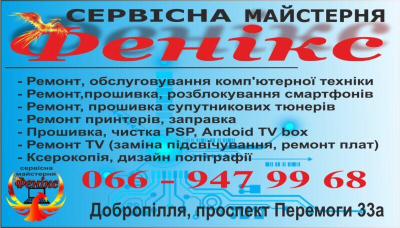 """Сервисная мастерская """"Феникс""""  Доброполье предлагает компьютерные услуги"""